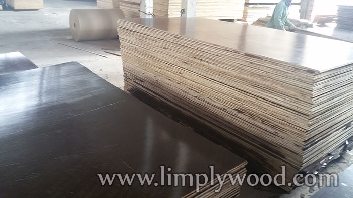 What is WBP glue – which is commonly used for plywood / film faced plywood